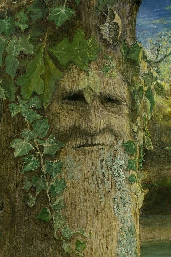 Baum Gesichter