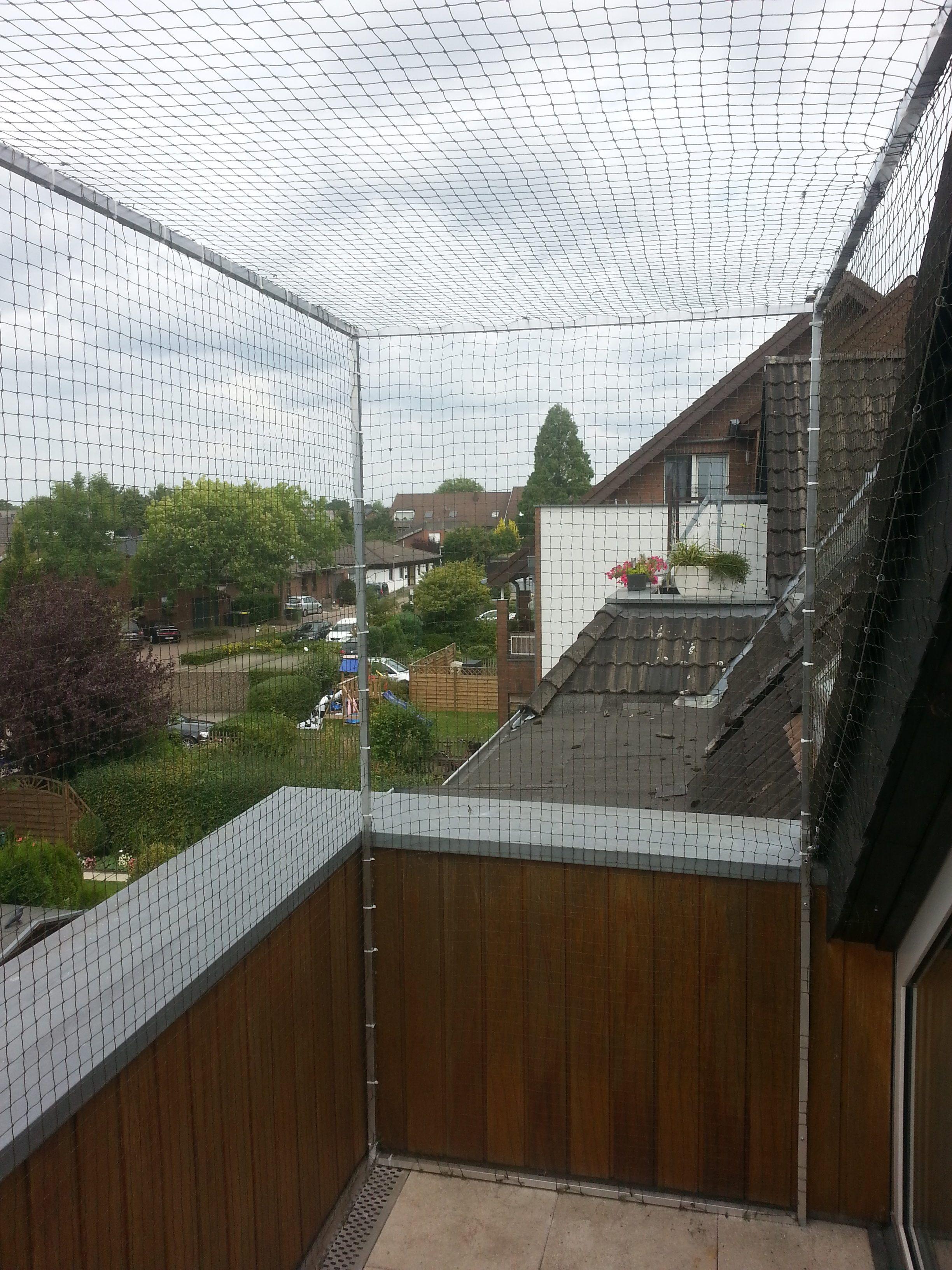 Katzennetz Fur Dachloggia Balkon Mit Dachrand Katzennetze