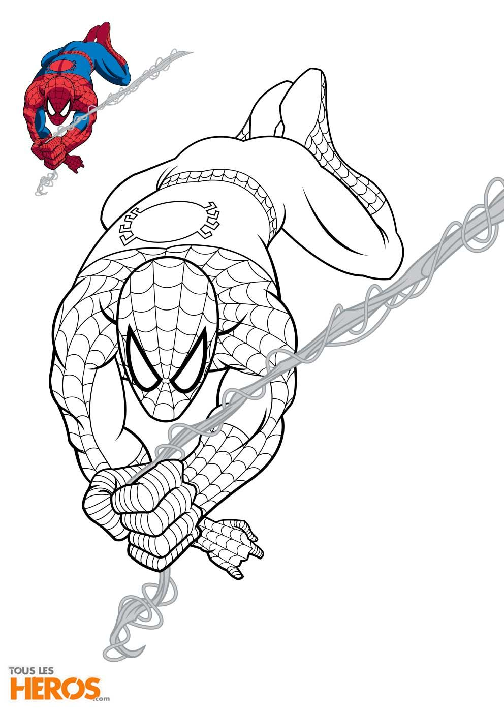 Coloriage spiderman, Dessin spiderman, Coloriage spiderman à imprimer