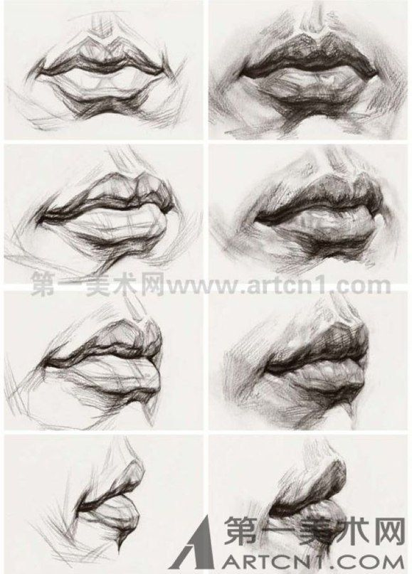 Art Practice Drawing Anatomy Pinterest Kresba Tuzkou Kresby