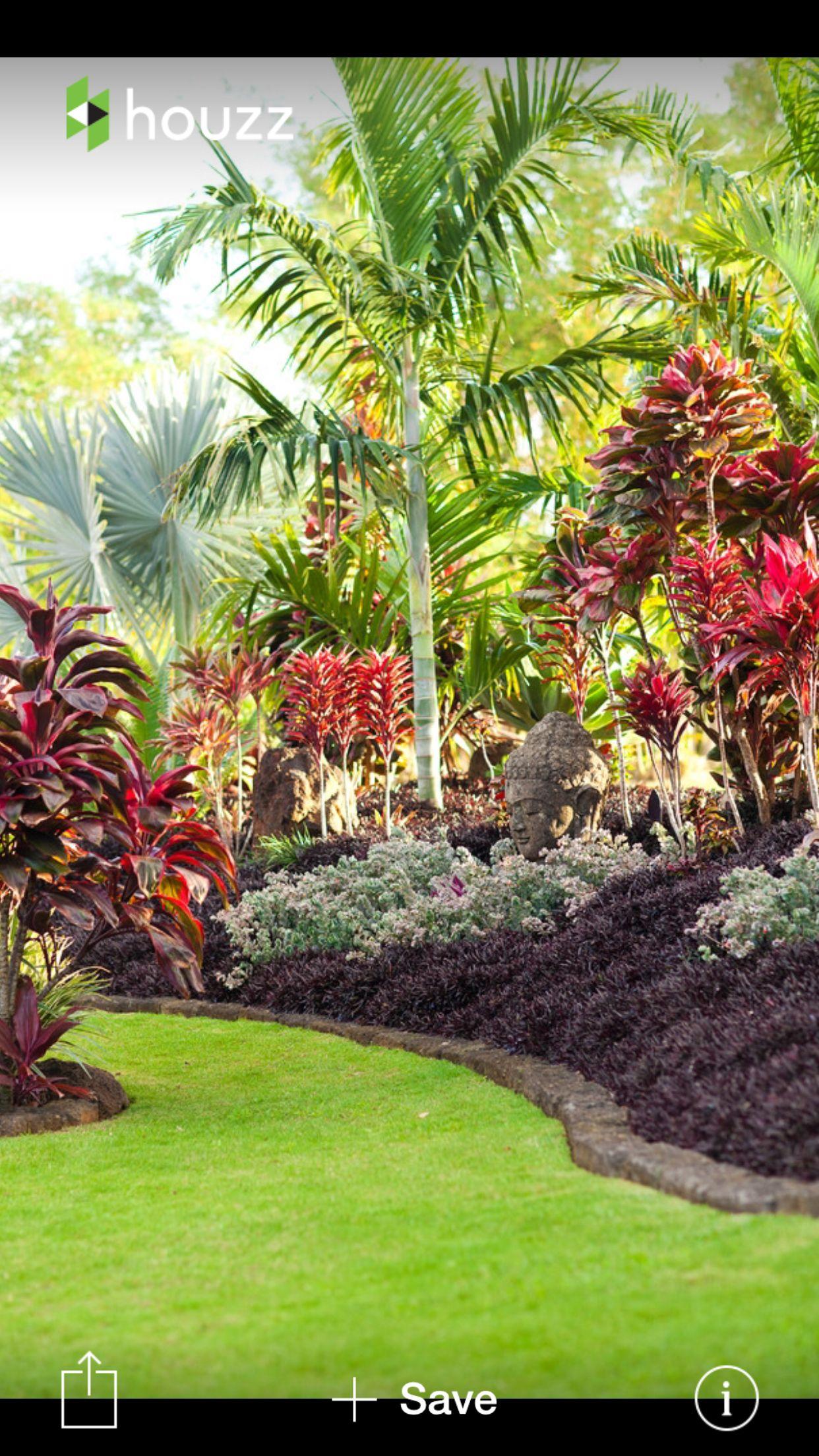 tropical massif rocaille haie pinterest tropical garden