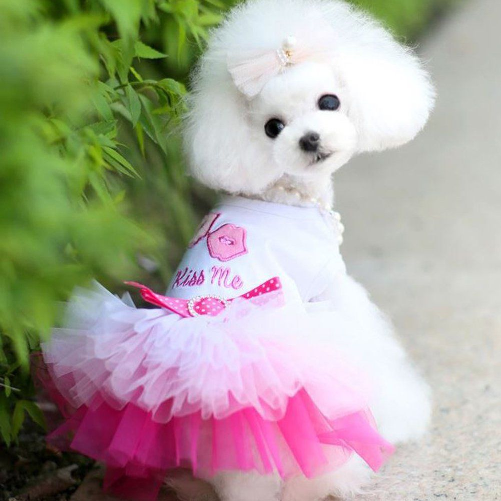 XS  cotton t-shirt dress Dog or Cat White Make Your Own Pet Clothing
