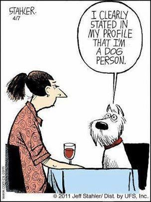 I Clearly State In My Profile That I M A Dog Person Funny