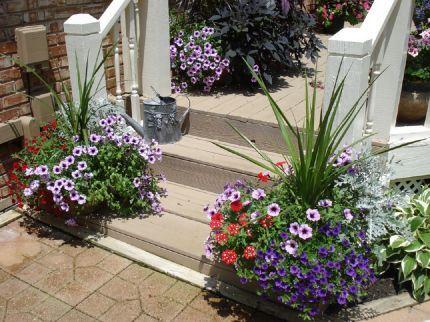 Bob U0026 Mary Annu0027s Garden In Kentucky  Click Through To See More Photos Of