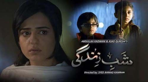 Shab e Zindagi Episode 7 11th March 2014 In High Quality