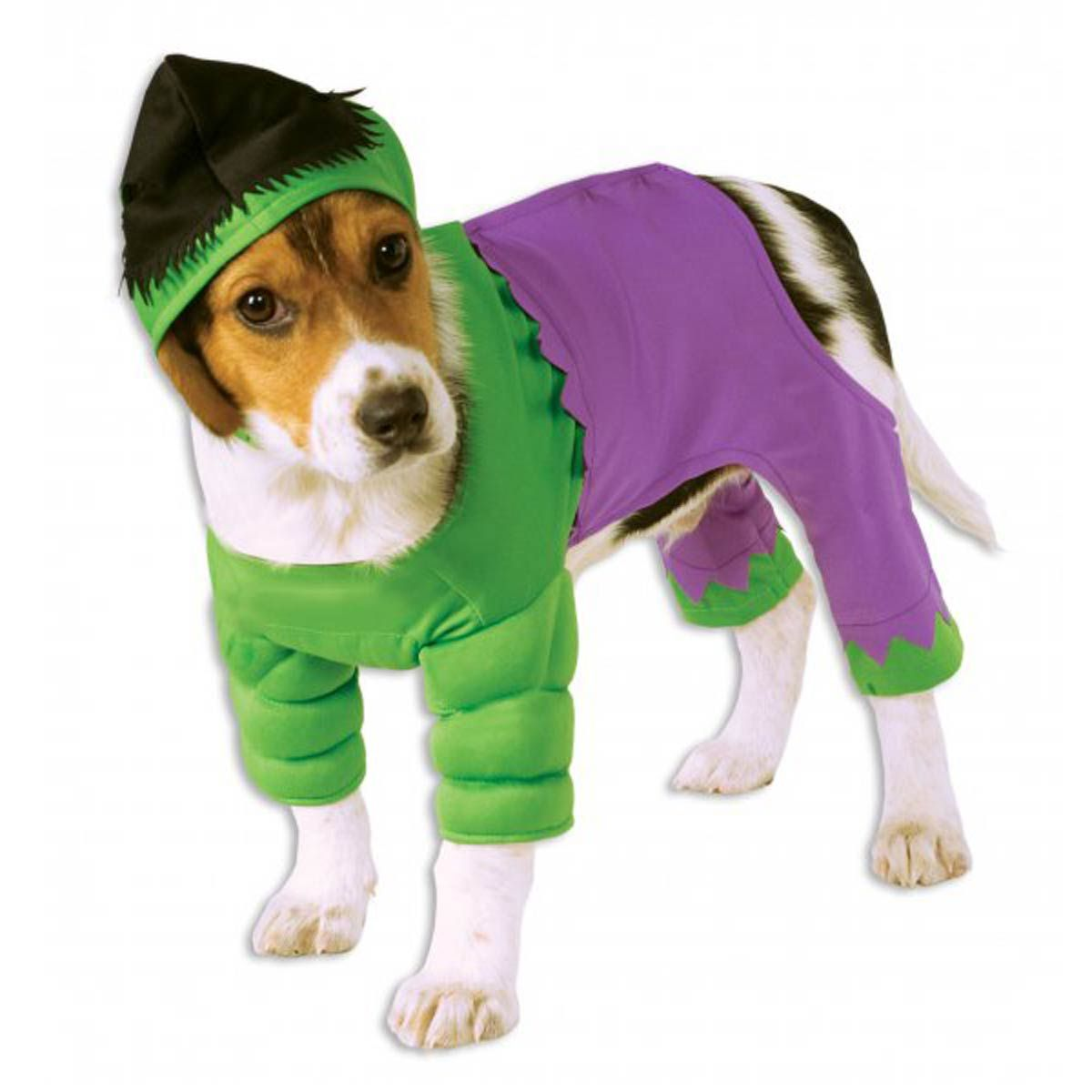 Marvel Hulk Dog Costume Pet Costumes Dog Halloween Costumes