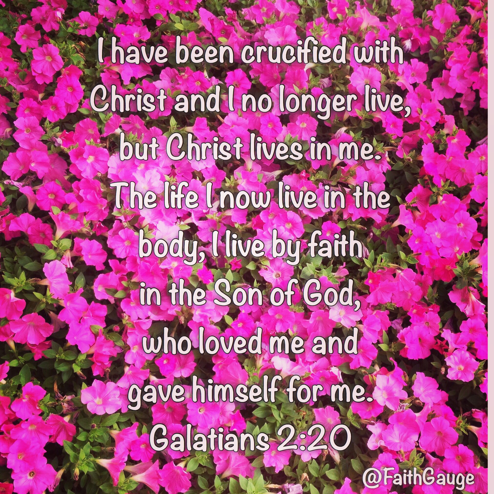 Galatians 2 20 NIV Paul says we should live by faith in Jesus