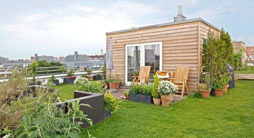 Dachgarten Mit Gartenhäuschen