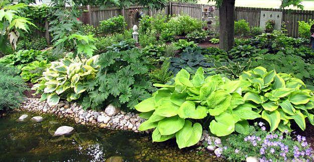 Shade Garden Plans Shade Garden Design Garden Planning Shade