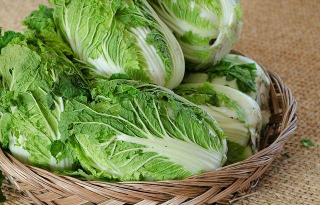 【管理栄養士監修】栄養がないは噓!? 白菜の栄養成分と ...