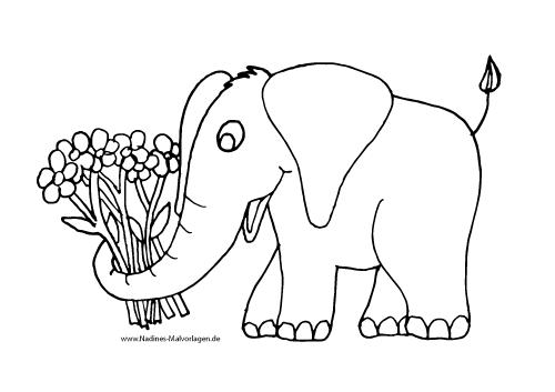 Elefant Mit Bunten Blumen Nadines Ausmalbilder Bunte Blumen Elefant Ausmalen