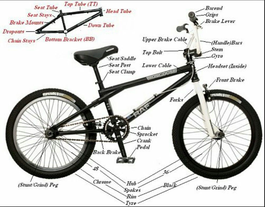 Bmx Parts Names On All The Parts On The Bike Bmx Bmx Bike Parts Bmx