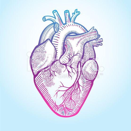 heart illustration art buscar con google heart. Black Bedroom Furniture Sets. Home Design Ideas