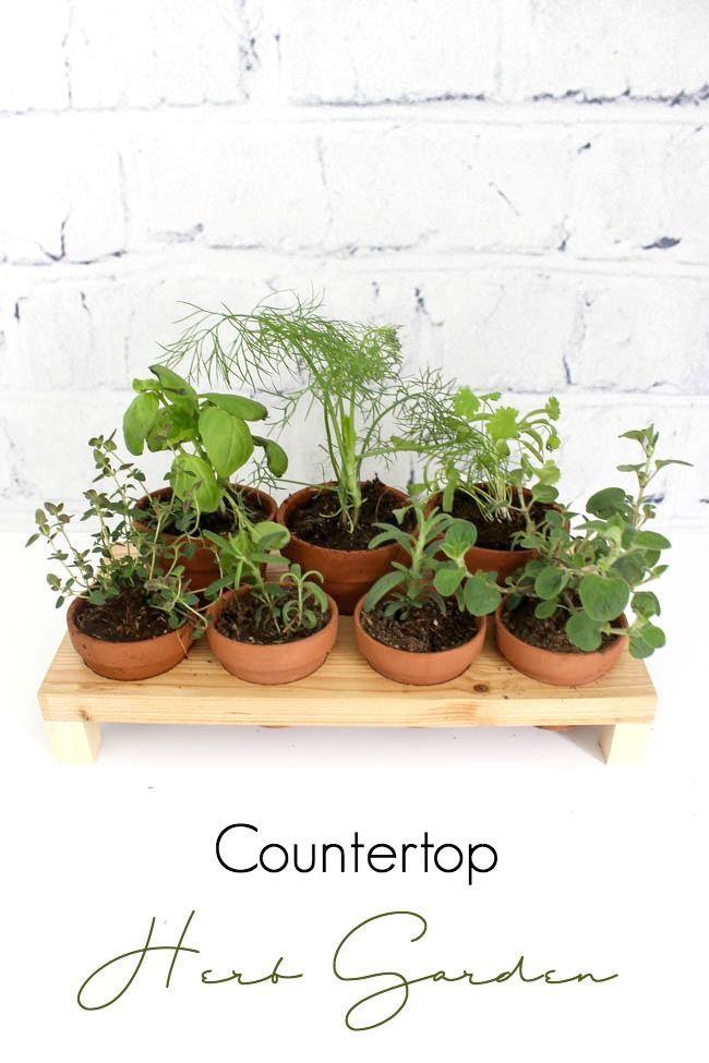 How To Build Your Own Indoor Herb Garden 400 x 300