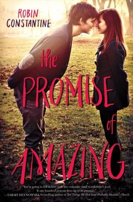 New Arrival The Promise Of Amazing By Robin Constantine Books And
