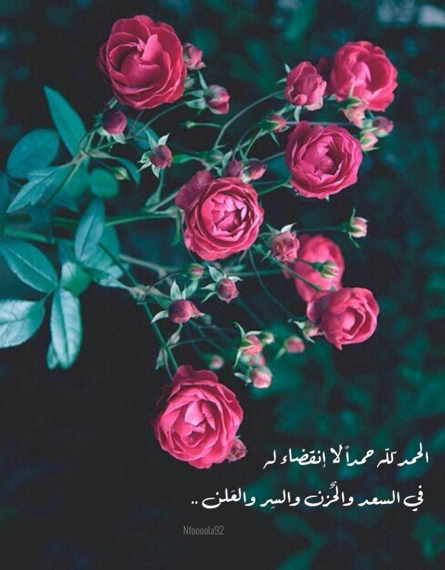 لك الحمد ربي والشكر في السراء والضراء Nature Iphone Wallpaper Nature Wallpaper Flowers