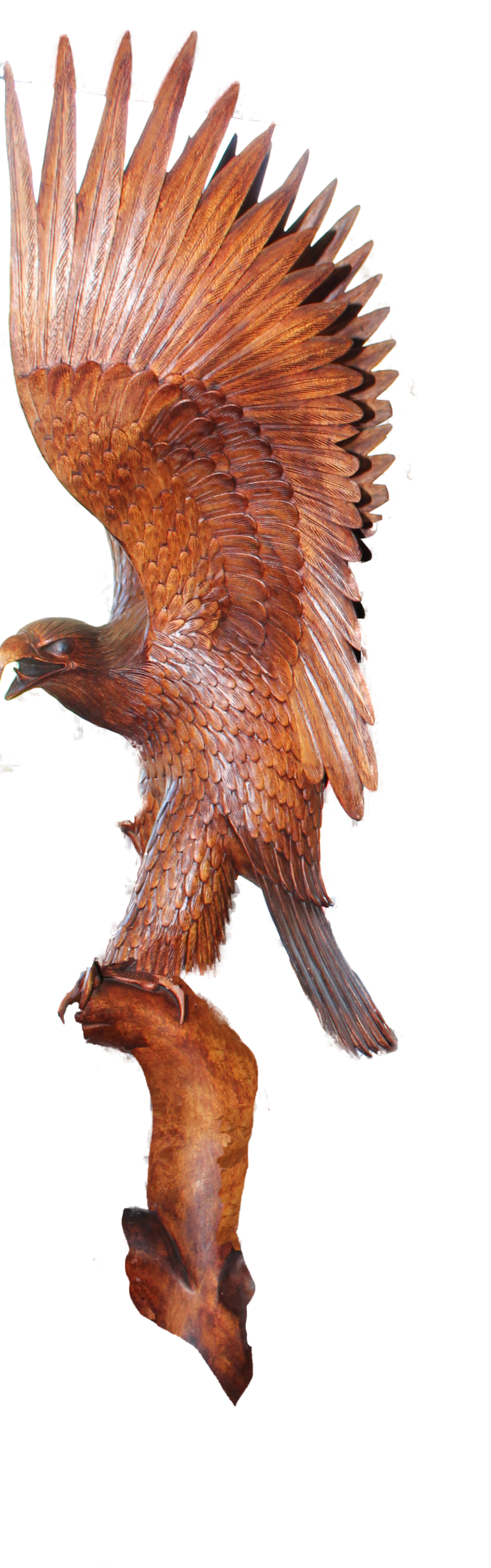 Wood carvings of eagle heads carving by