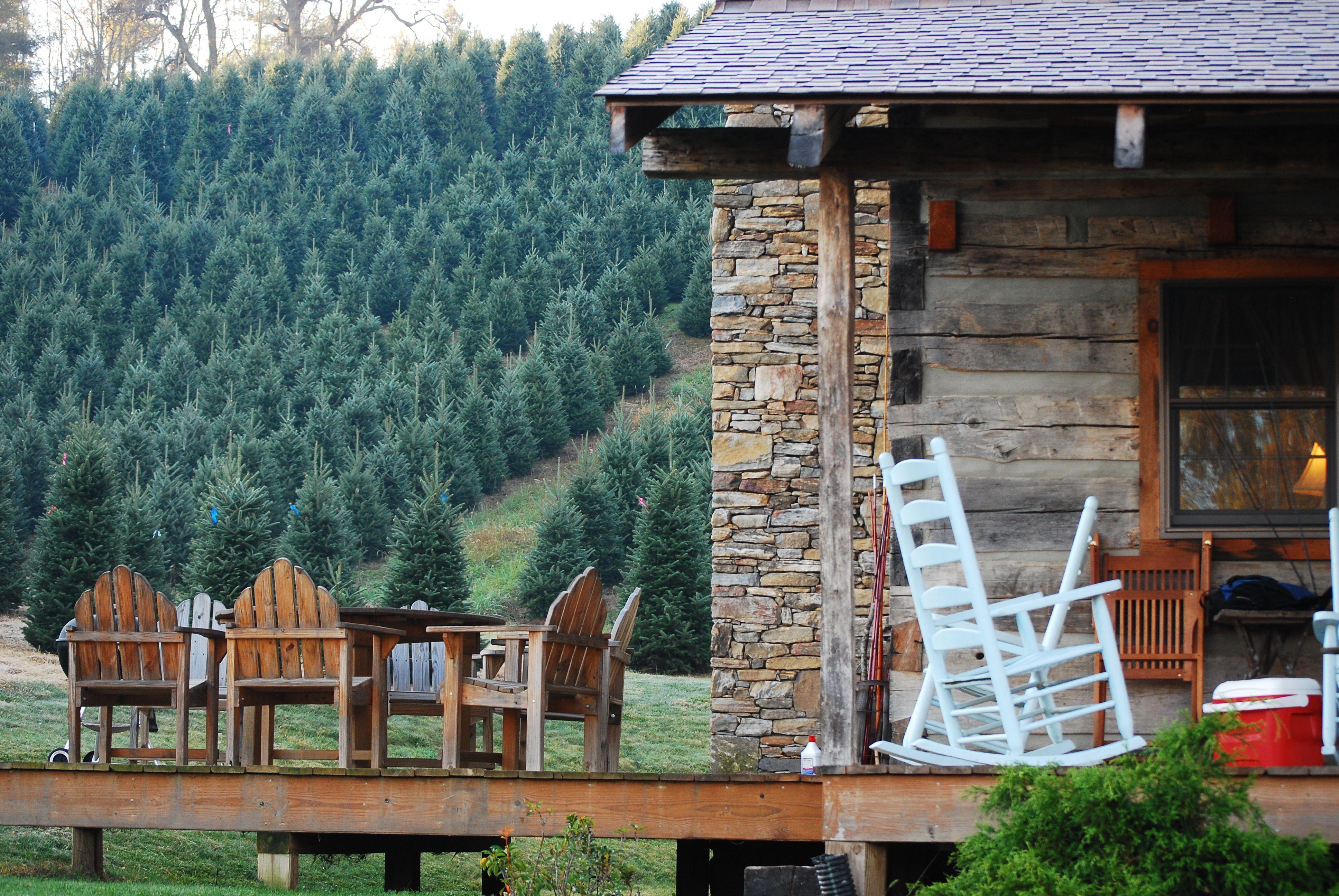 Maggie Valley Cabins Rentals North Carolina Log Cabin Getaways Log Cabin Christmas Cabin