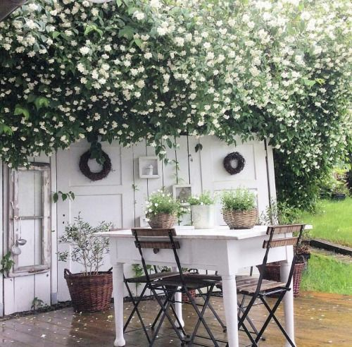 Shabby Garten hi my name is and i am a big shabby chic fan i also