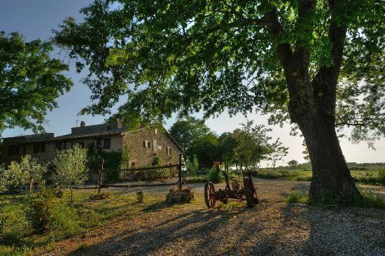 Agriturismo Biologico in Toscana Sant'Egle