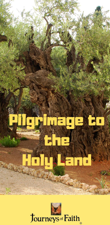 Pilgrimage to the Holy Land #holylandtour #holyland # ...