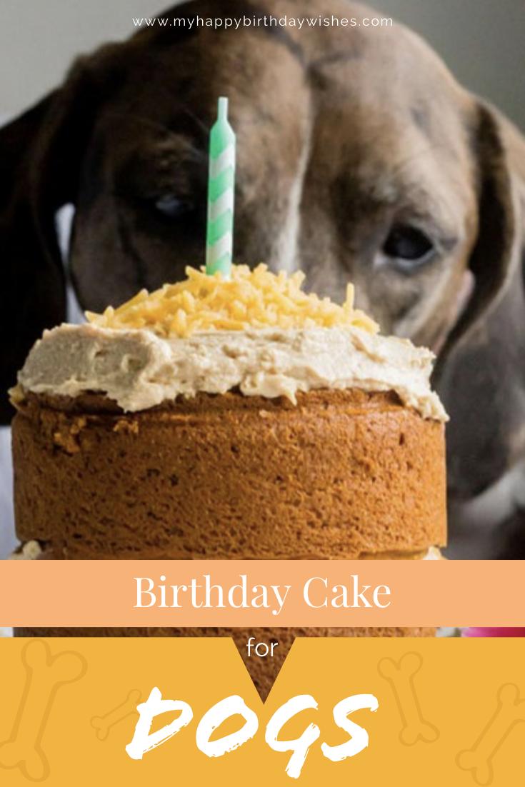 Fantastic Birthday Cake For Dogs 30 Easy Doggie Birthday Cake Ideas 2018 Funny Birthday Cards Online Drosicarndamsfinfo