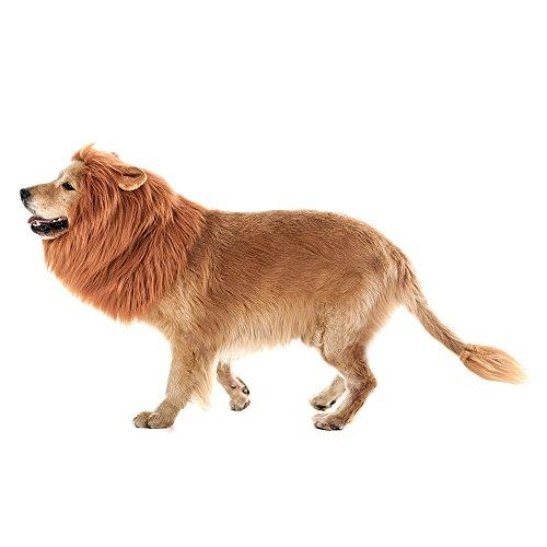 Lion Mane Wig for Dogs - mrtopbuy.com