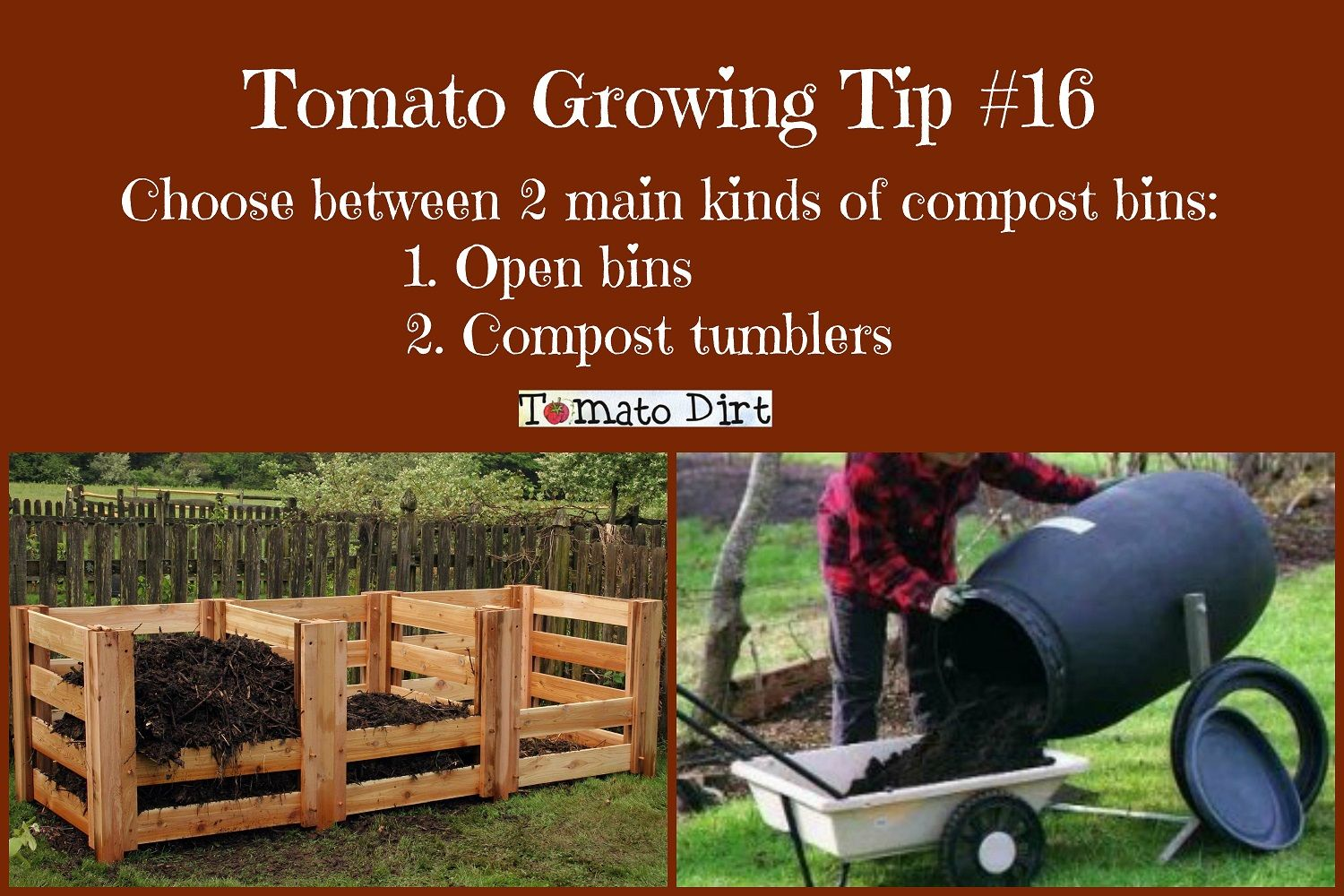 Best Tomato Growing Tips Readers Share Favorites 640 x 480