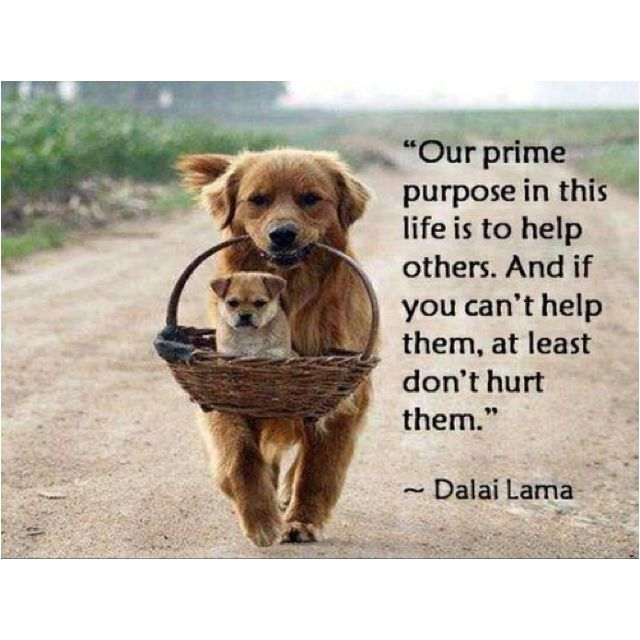 Help others more.