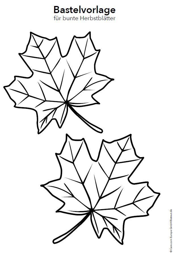 Fensterdeko für den Herbst basteln - magazinbetreut