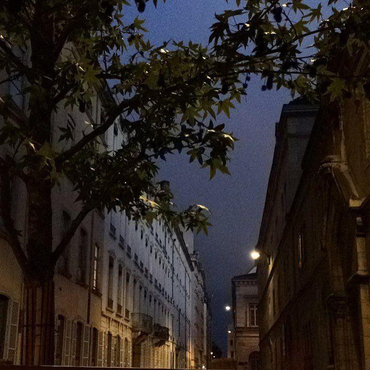 555 mentions J'aime, 7 commentaires - @florencebouvier sur Instagram: «Dans ma rue...🍁✨ #inmystreet #walkingwithmydog #love #jolielumière #automn #florencebouvier»