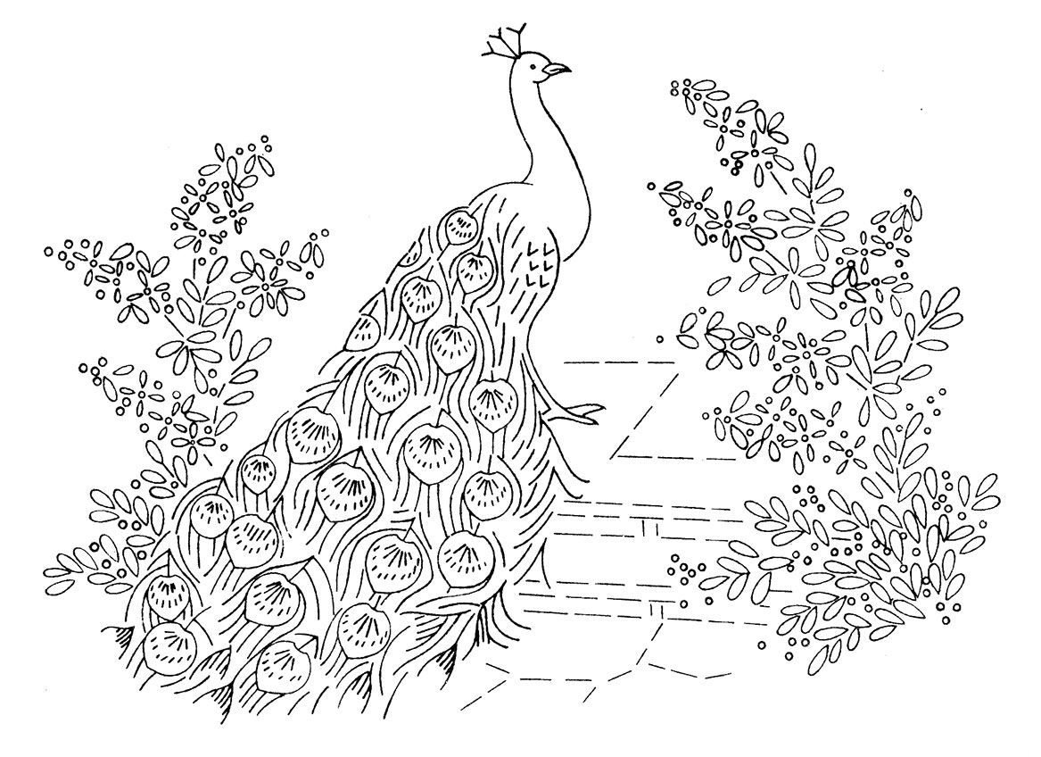 Coloring pages of peacocks - Laura Wheeler Design 664 Peacocks Q Is For Quilter