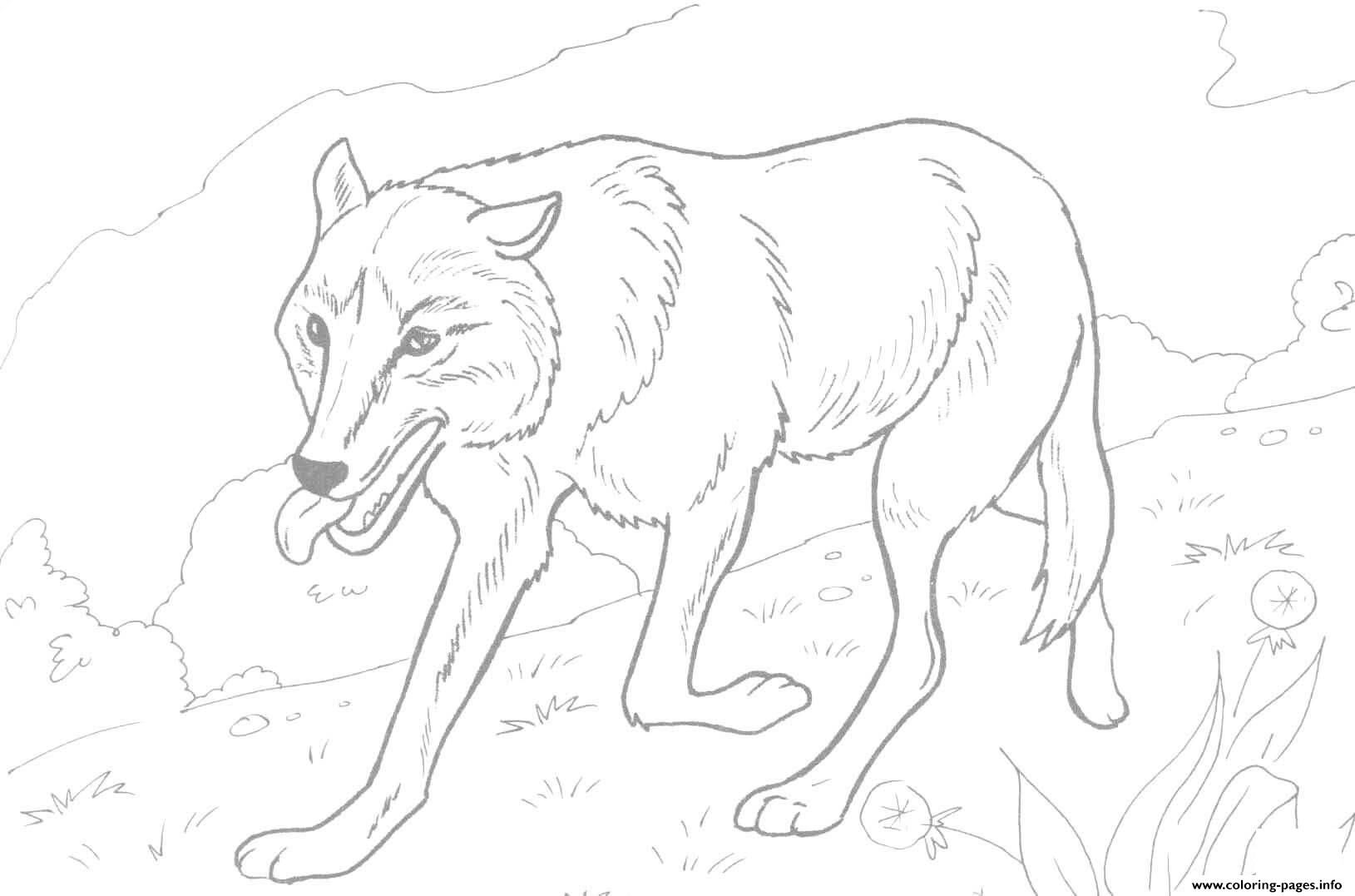 Print realistic wolf running coloring pages | Coloring Pages for ...