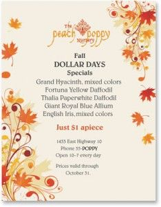 Autumn Flyers Are More Effective With Fall Border Paper