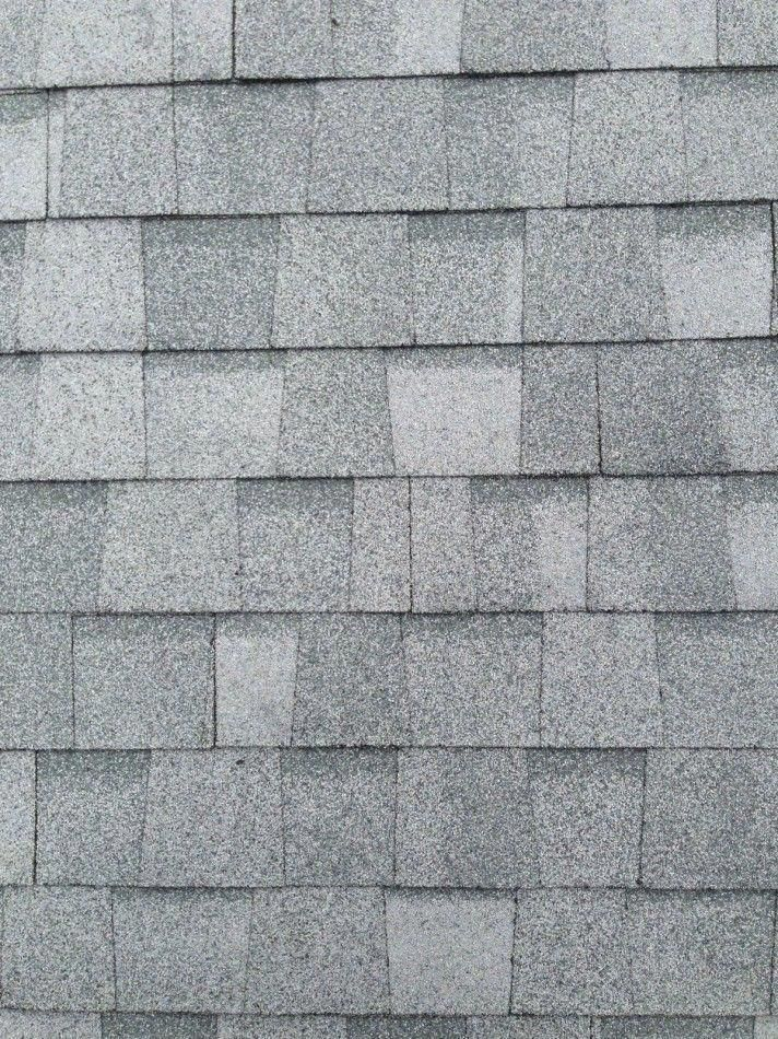 Best Silver Birch Shingle By Certainteed Everything You 640 x 480