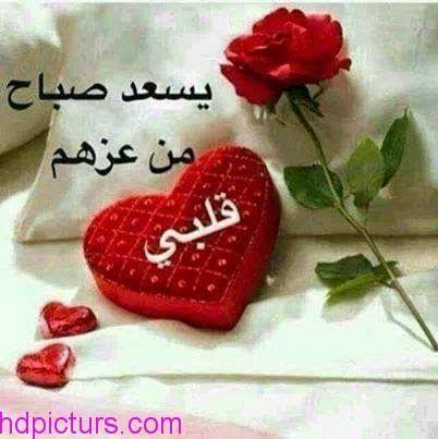 صباح الخير حبيبتي الغالية نواعم