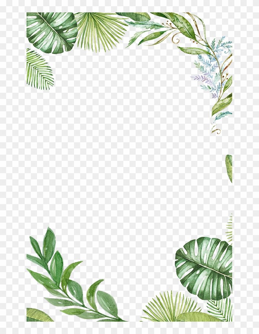 How To Paint Leaf Borders With Emma Yahoo Image Search Results Painted Leaves Tropical Leaves Clip Art Borders