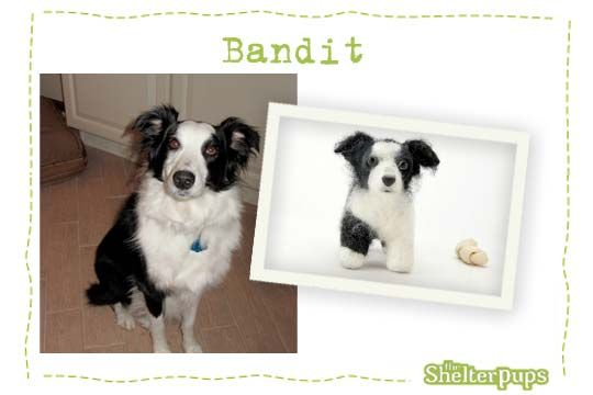 Samples Of Our Custom Stuffed Dogs Shelter Pups Donate 125 And They Make A Custom Stuffed Animal Of Your Pup A Custom Stuffed Animal Dog Lover Gifts Dogs