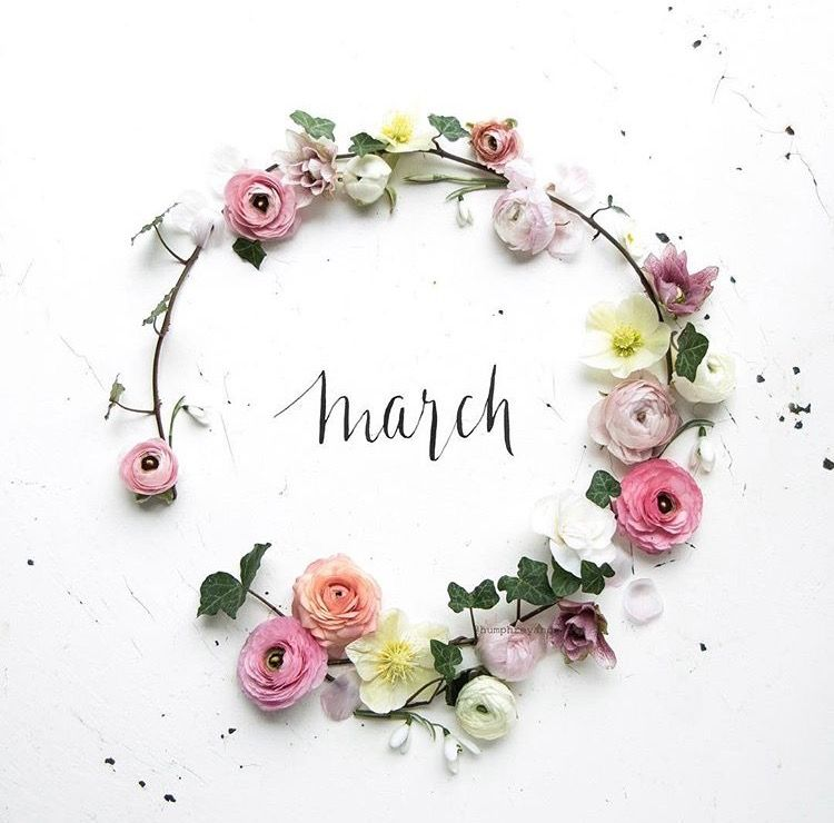 ☘ Ⱳᴇʟϲoмᴇ ༻ March | Hello march, Month flowers,  Flowers