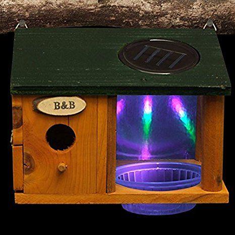 Led Solar Vogelhaus Mit Wasserstelle Nistkasten