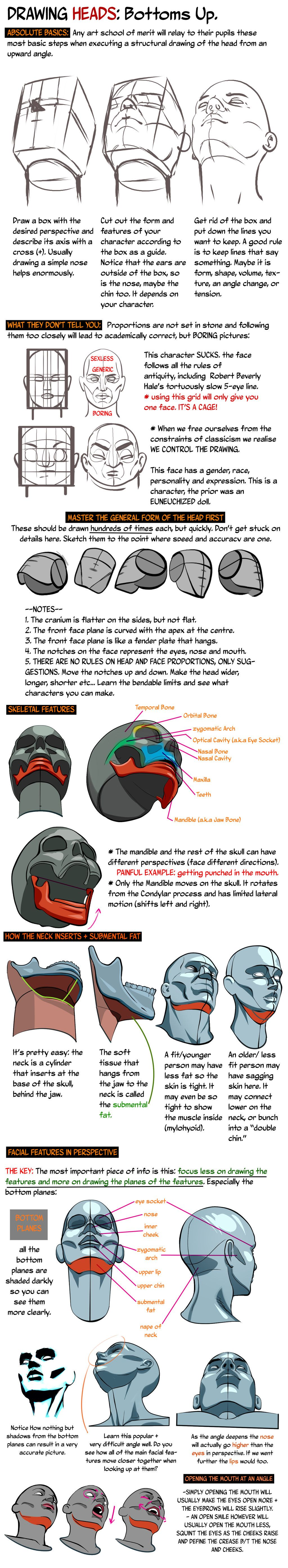 HEADS UP: Drawing the Head from a low angle. by NemoNova.deviantart ...