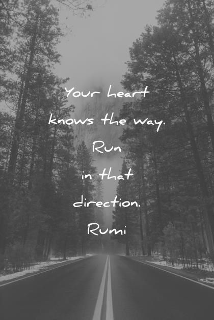 rumi quotes your heart knows the way run in that direction wisdom quotes