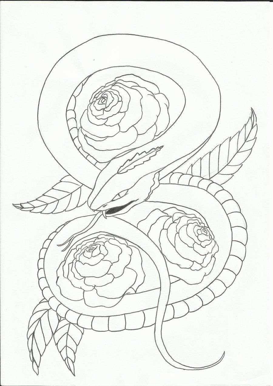 Line Drawing Snake : Snake tattoo design by sasan ghods deviantart