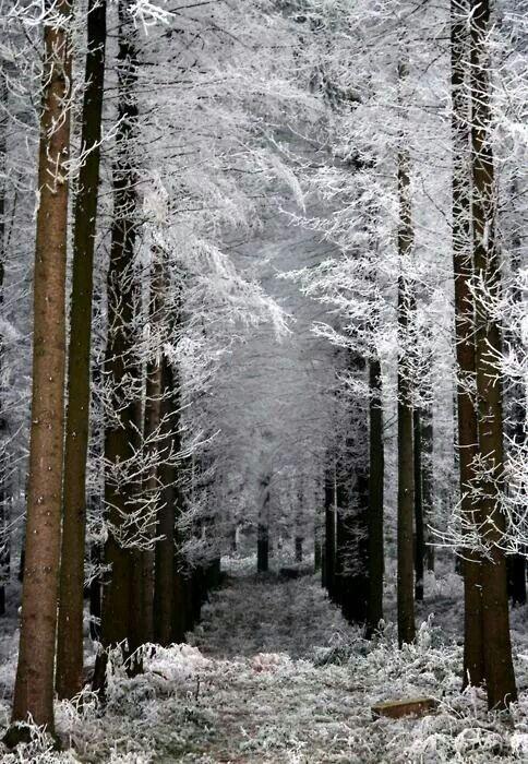 beautiful - peaceful