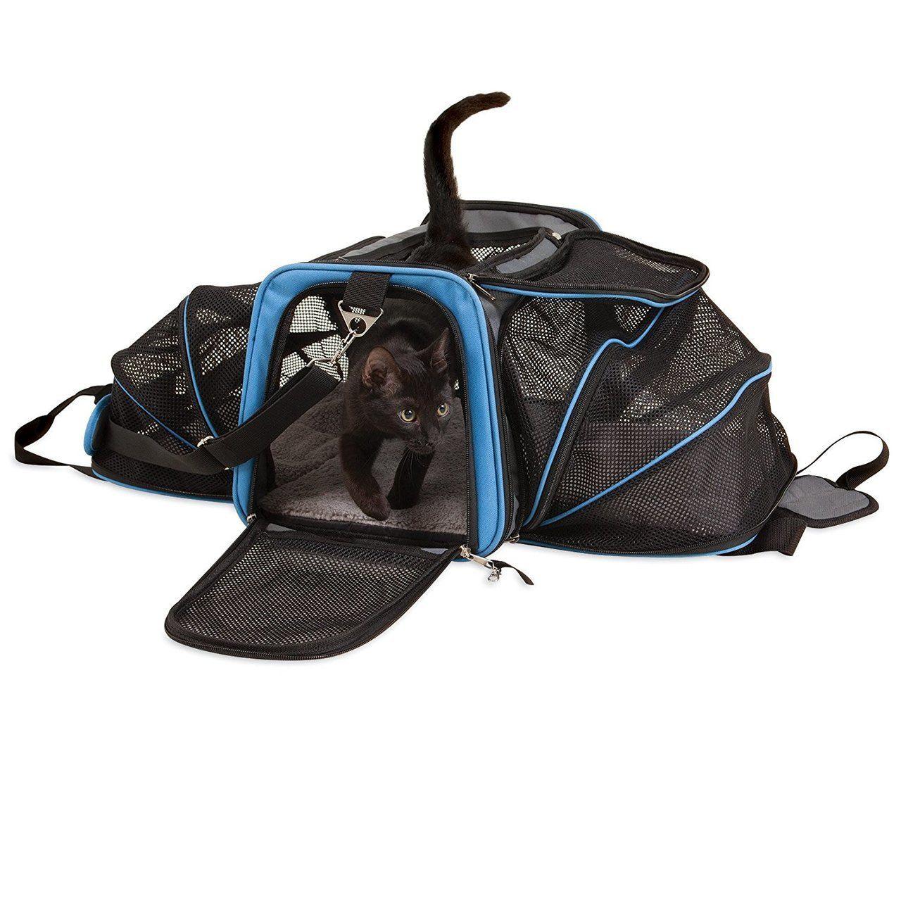 Double Extendable Cat Carrier Jackson Galaxy Store Cat