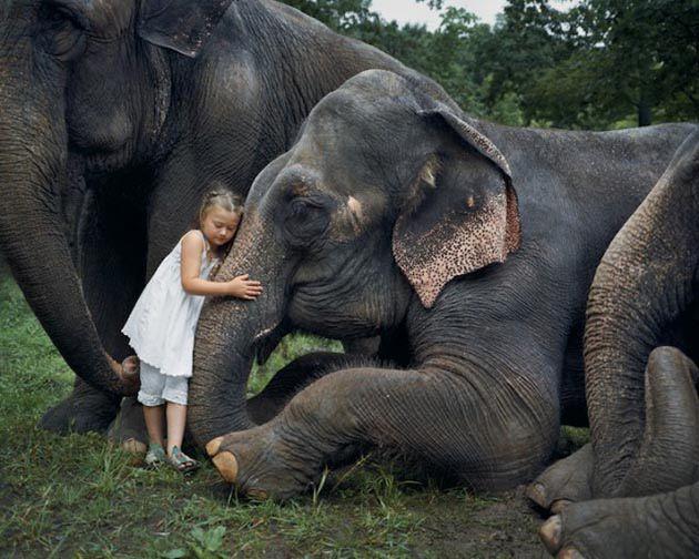 Fotógrafa retrató a su hija junto con animales exóticos durante 10 años