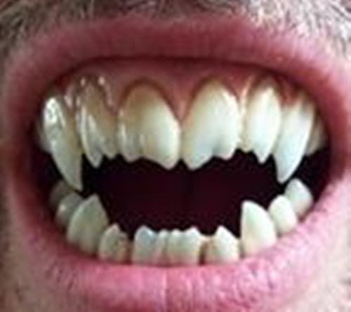 sharp teeth. sharp teeth smile - buscar con google a