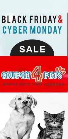New Coupon Codes Printable Coupons Latest Promo Discount Bargains The Best Online App Builder Create My Free App Printable Coupons Coding Affiliate Partner