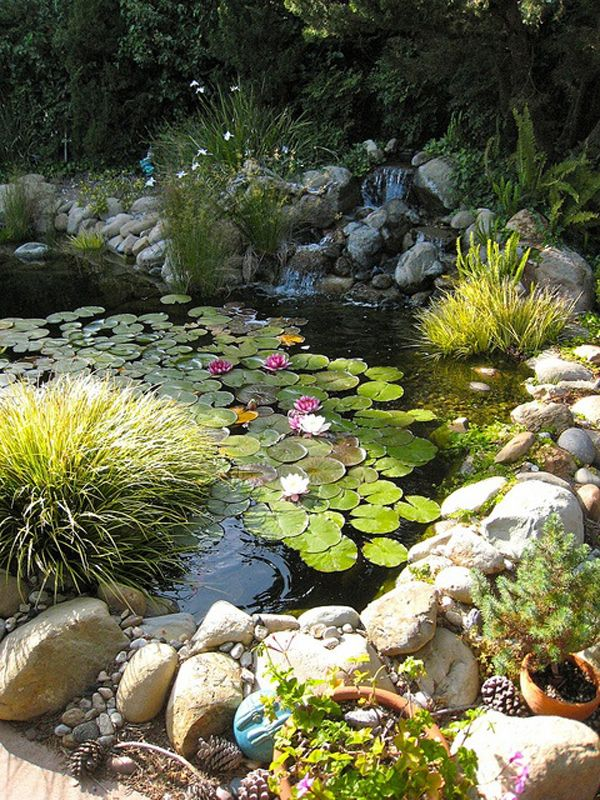 20 Beautiful Backyard Pond Ideas | Home Design And Interior | Lush ...