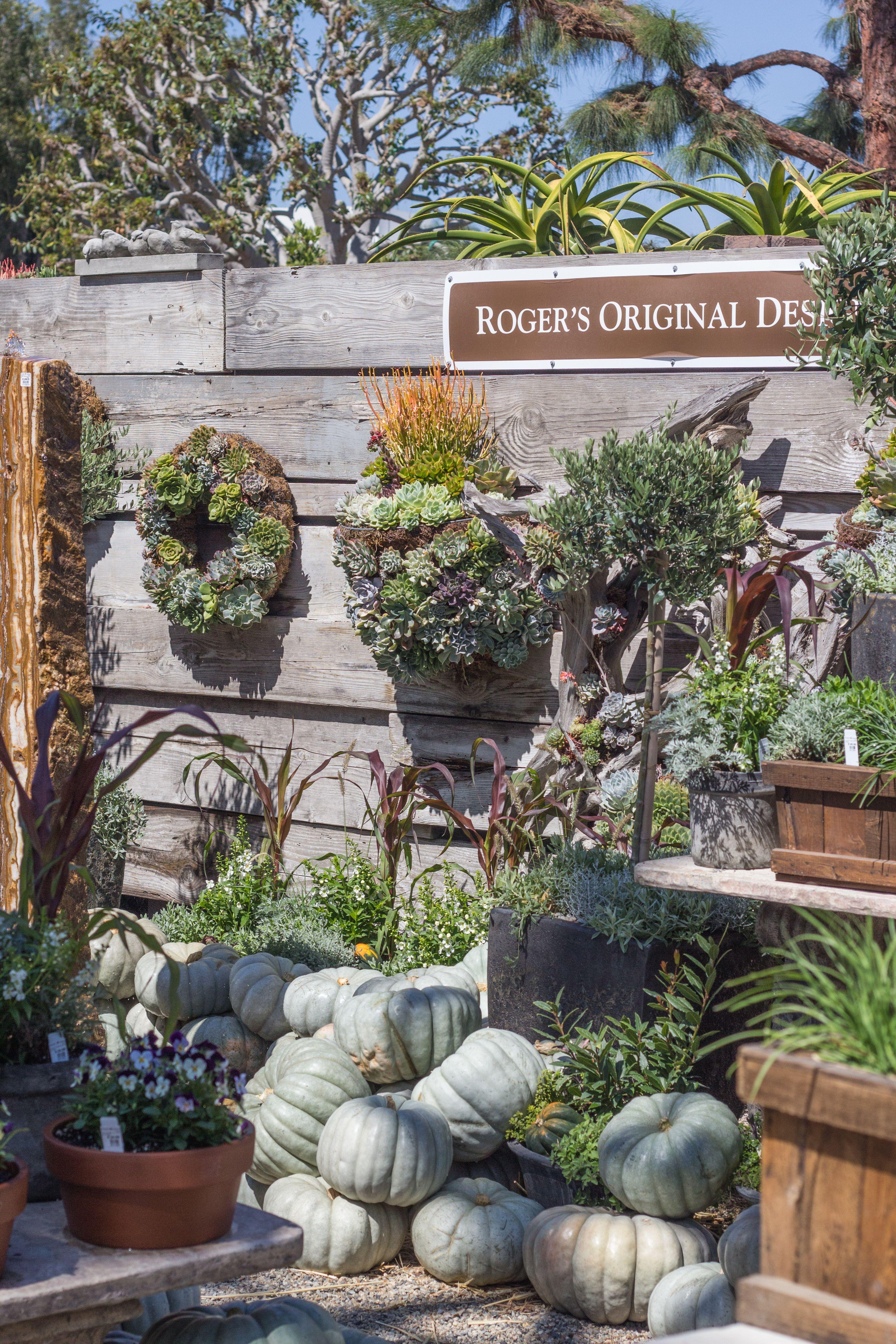 Planted Arrangements Roger S Gardens Rogers Gardens Vista Garden Outdoor Gardens